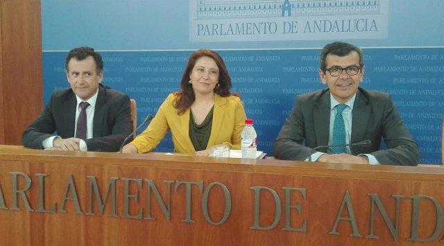 Carmen Crespo, hoy en rueda de prensa