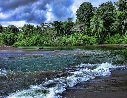 Costa Rica, un paraíso de diversidad entre el Caribe y el Pacífico