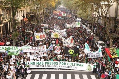 Miles de personas salen a las calles en Argentina para pedir el uso medicinal del cannabis