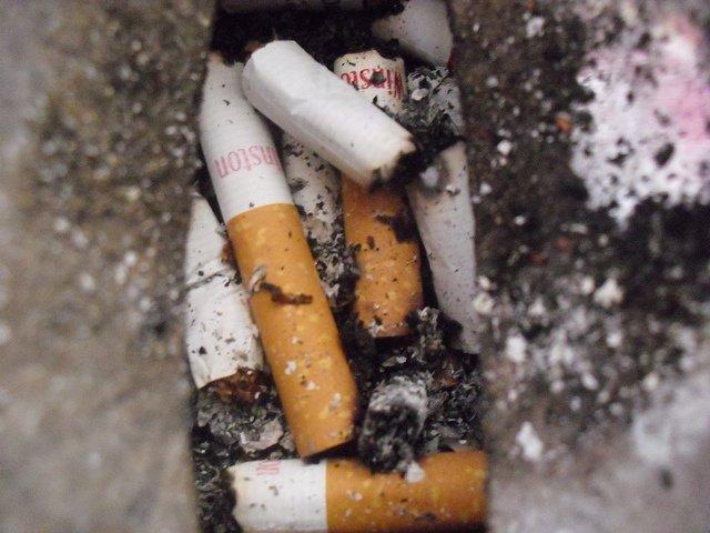 Colillas De Tabaco