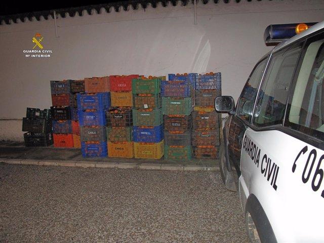 Naranjas robadas y recuperadas en Sevilla