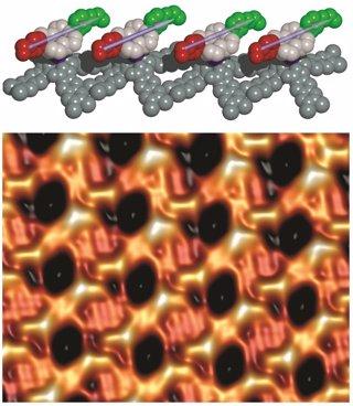Motores moleculares sincronizados