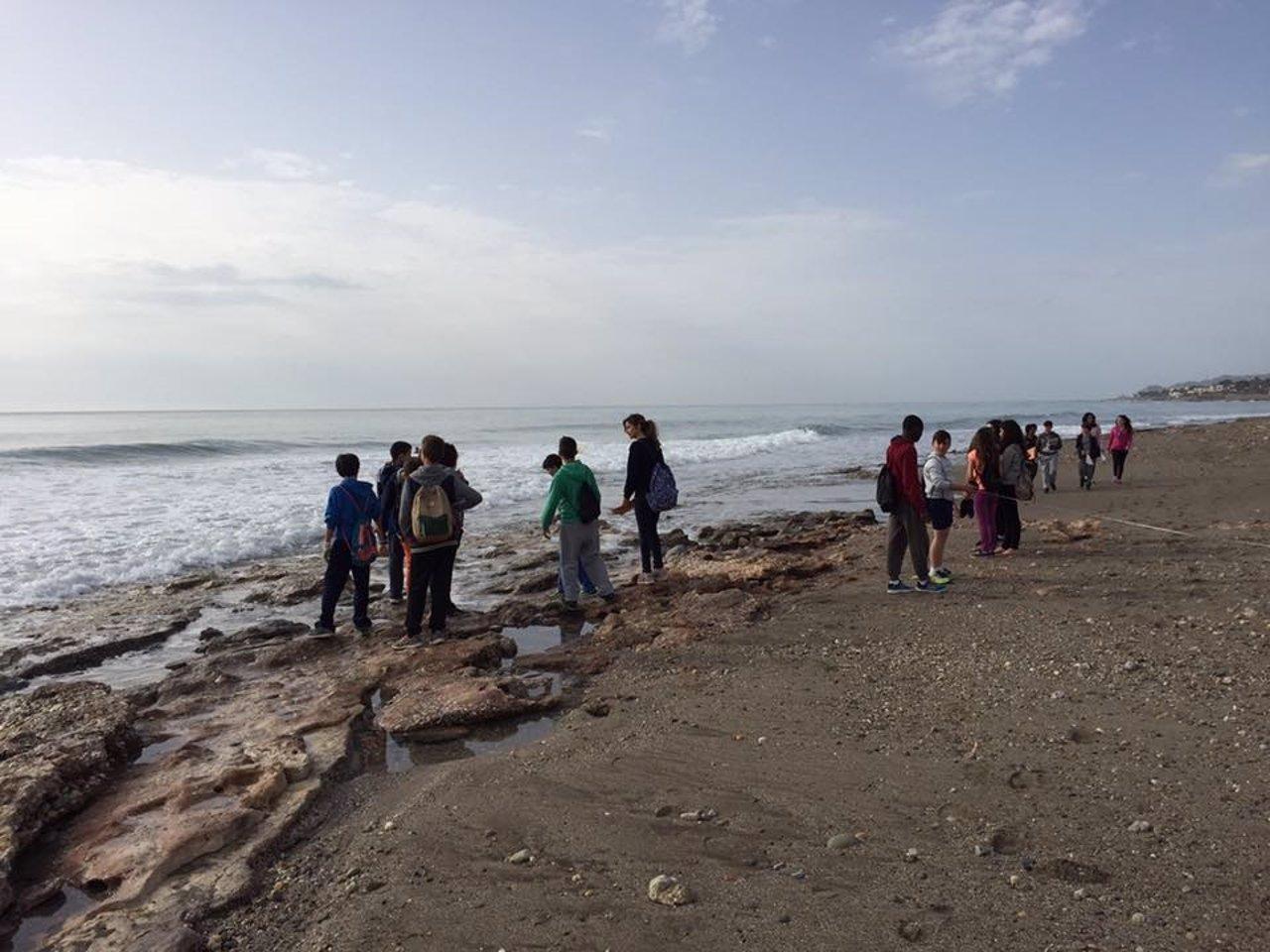 Alumnos participan en el proyecto Correlimos