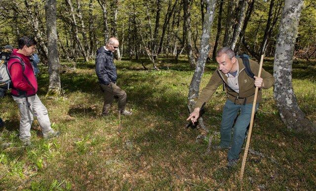 Luis Robles, Borja Palacios y Ramón Balsera señalan el aumento de arandaneras