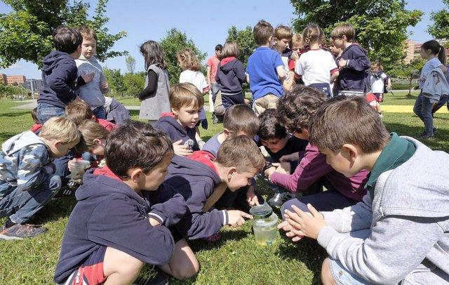 Escolares en el Día de la Biodiversidad