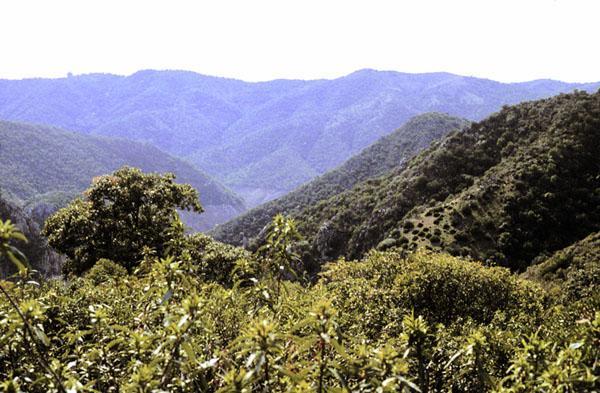 Sierra de Hornachuelos