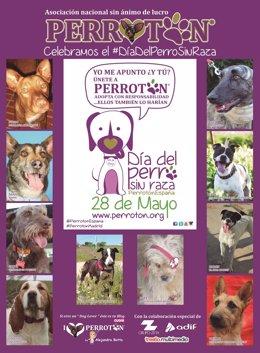 Cartel del Día del Perro Sin Raza, 28 de mayo