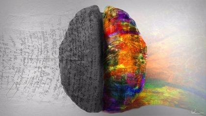 El cerebro necesita mantenerse limpio para estar sano
