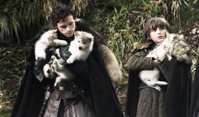 Juego de Tronos: ¿Cuántos lobos huargos quedan vivos?
