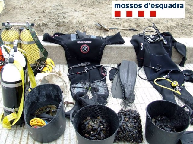 Material incautado a los pescadores furtivos en Cap de Creus