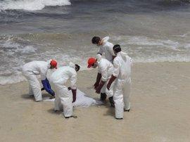 Ascienden a 133 los cuerpos localizados en los últimos días en las costas de Libia