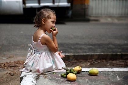 Frutas tropicales, solución contra la escasez de alimentos en Venezuela