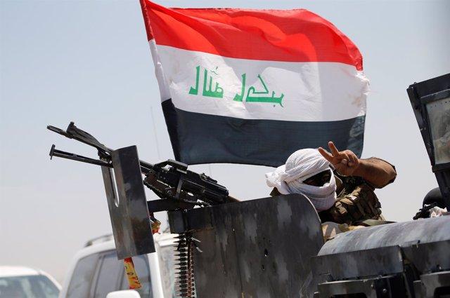 Ofensiva militar del Gobierno iraquí sobre la ciudad de Faluya