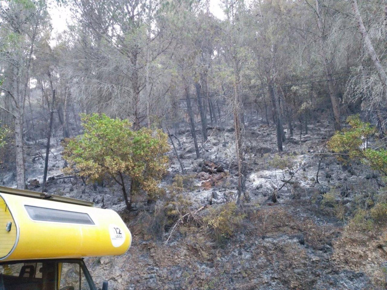 Incendio en Puigpunyent