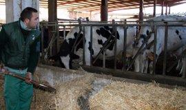Tejerina espera que la UE impulse en julio nuevas medidas para el sector lácteo