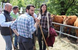 En Asturias, el reparto de escaños es el mismo que en diciembre