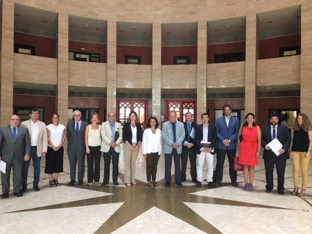 Comite Ejecutivo para organizar el II Metallic Mining Hall
