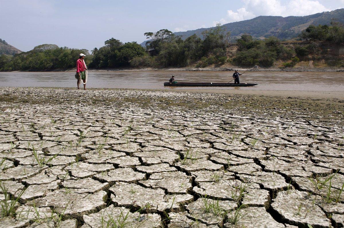 La desertificación afecta a más de 300 millones de hectáreas en ...