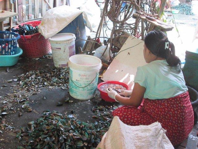 Refugiada karen en Tailandia trabajando con mejillones