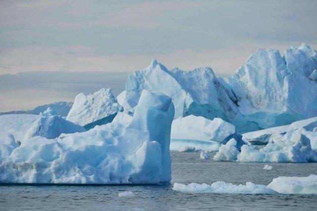 Banquisas del Ártico