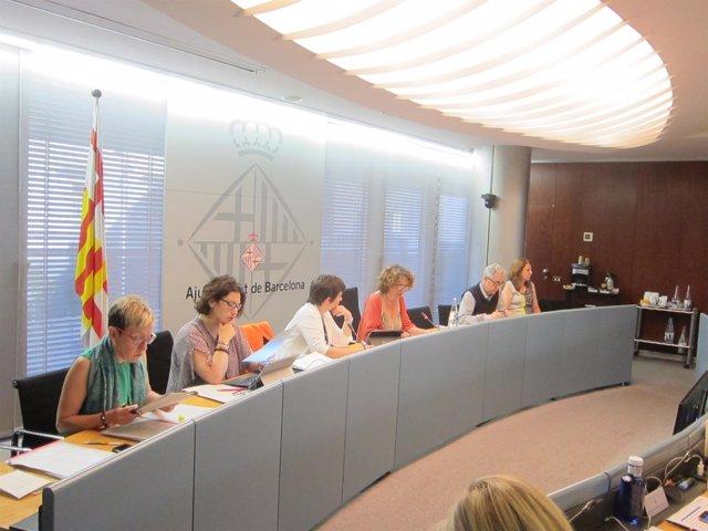 Comisión de Derechos Sociales del ayuntamiento