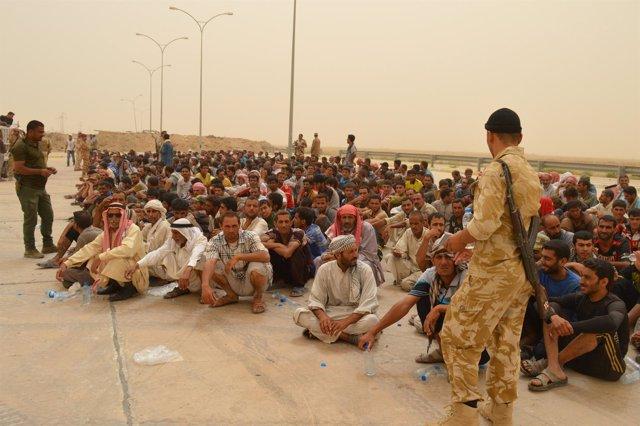Civiles desplazados de Faluya
