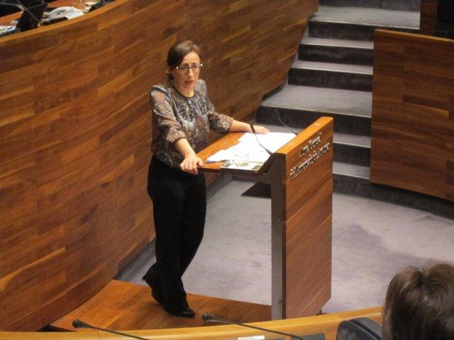 La consejera de Infraestructuras, Belén Fernández