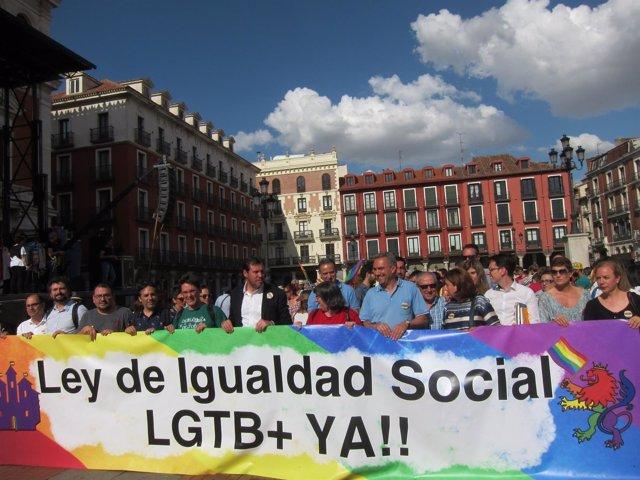Manifestación Día de la Diversidad sexual . Ayuntamiento de Valladolid 2016