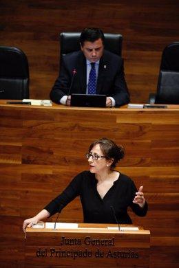 Belén Fernández en el Pleno.