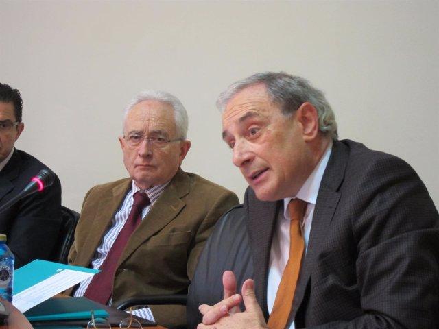 Sánchez Izquierdo en comisión del Parlamento de Galicia