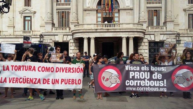 Antitaurinos apoyan ante Ayuntamiento de Valencia la prohibición del bou embolat