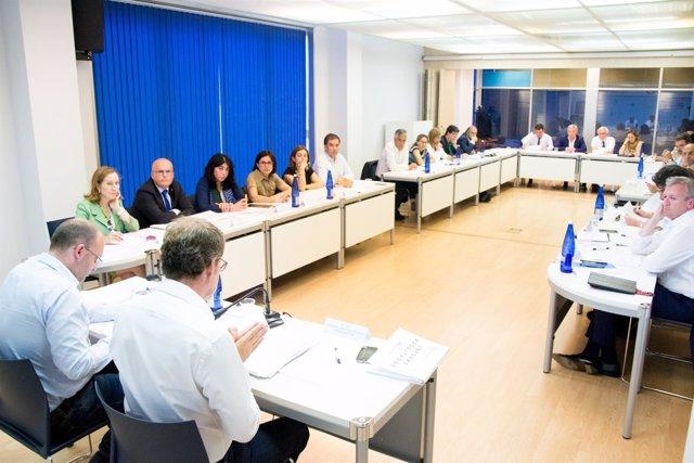 Comité de Dirección do PPdeG