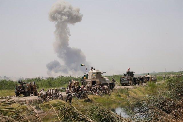 Enfrentamientos cerca de la ciudad de Faluya, en Irak
