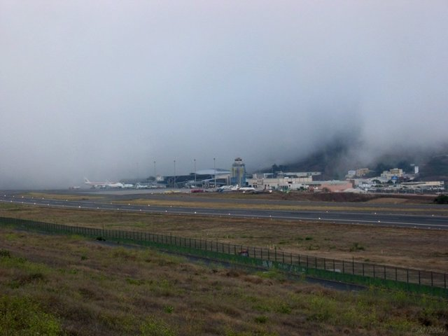 Niebla en el Aeropuerto de Tenerife Norte