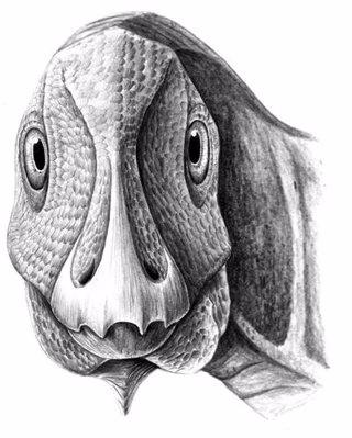 Aspecto del Telmatosaurus