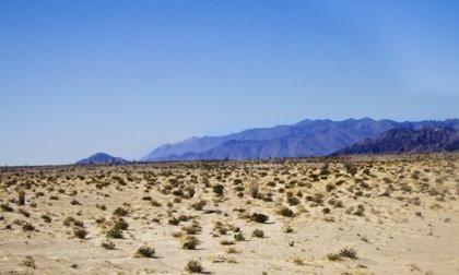 Hace 50 años México registró la temperatura más alta de la historia