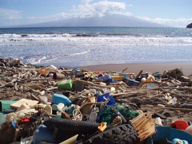 Contaminación marina en Hawai