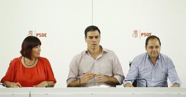 Reunión de la Ejecutiva Federal del PSOE con Pedro Sánchez