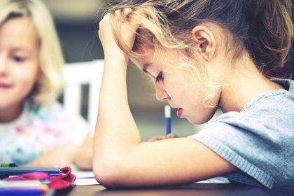 El ansiado pacto educativo: diez propuestas básicas