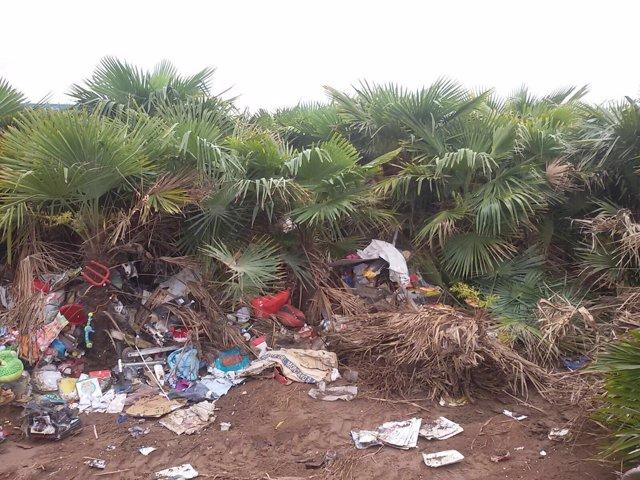 Imagen de la huerta antes de ser limpiada aporatda por Marenostrum Festival