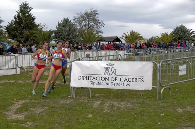 La Diputación de Cáceres destina 250.000 euros de ayudas al deporte