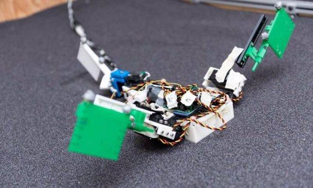 Robot  que imita a los primeros animales terrestres