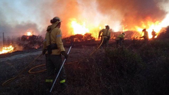 Tareas de extinción en el incendio de La Línea (Cádiz)