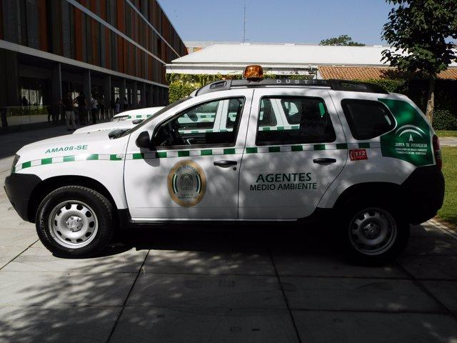 Imagen de uno de los nuevos vehículos.