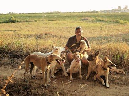 Experto en conducta canina cree que los perros pueden mejorar las dolencias emocionales de las personas