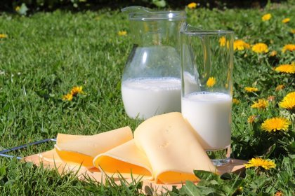 ¿Cuáles son las marcas de leche entera de 1 litro más caras?