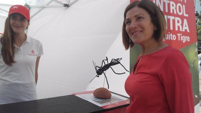Maite Girau presenta la campaña contra el mosquito tigre