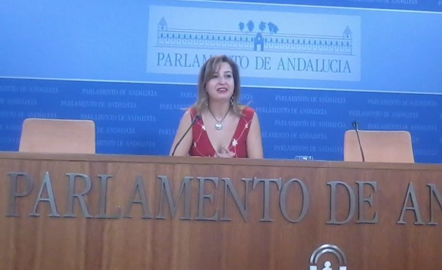 La presidenta del grupo parlamentario de Podemos Andalucía, Carmen Lizárraga