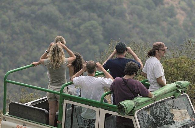 Avistamiento de aves a través de prismáticos desde un jeep.