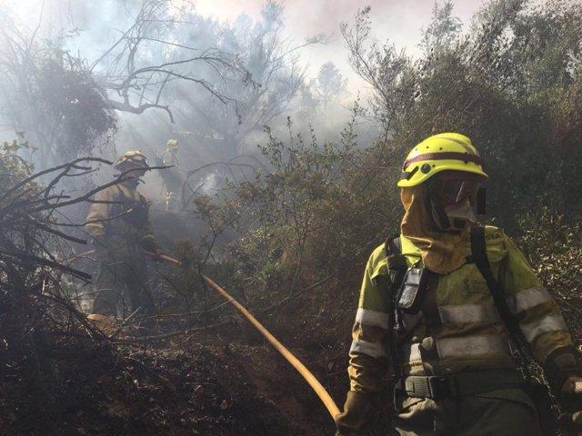 Bomberos trabajando en la extinción del incendio de Artana